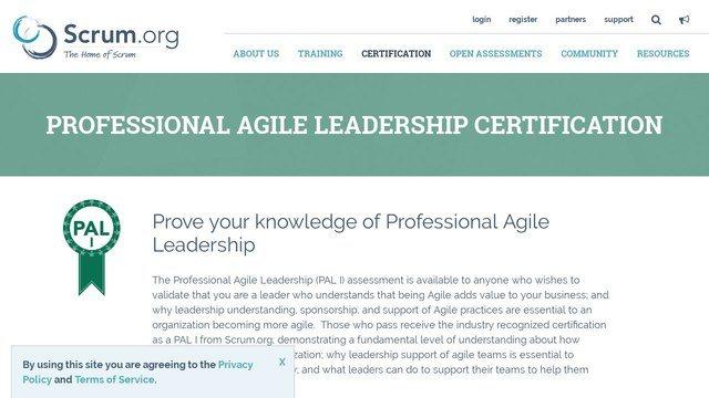 profesional agile leadership